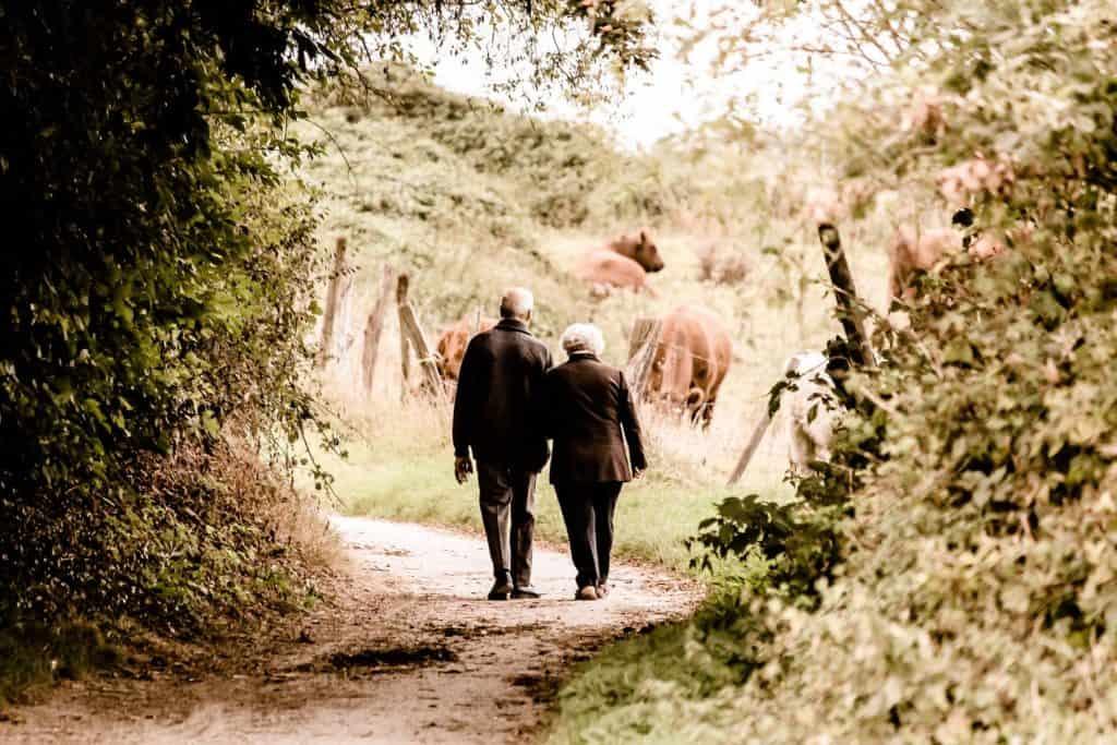 Großeltern machen einen Spaziergang im Wald, im Hintergrund sind Kühe zu sehen.